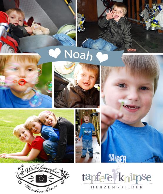 Noah - Mein erster tapferer Knirps